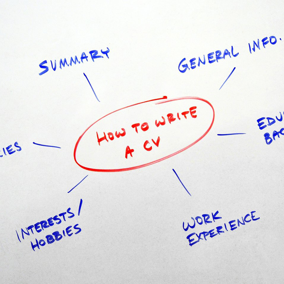 How to write a CV spider diagram